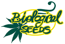 Biological Seeds Store – Your green choice